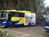 Asiik, Di Bogor Ada Bus Khusus Difabel, Gratis loh!