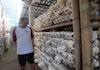 Desa Jamur, Harapan Masyarakat Urut Sewu