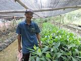 Gambar sampul Abdul Mughni, Pahlawan Lingkungan Mangrove dari Gresik