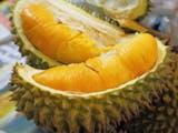 Gambar sampul Durian Seharga 14 Juta, Apa Istimewanya?