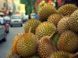 Gambar sampul Mungkin, Anda Jarang Melihat dan Menikmati Rasa Durian-durian Asli Indonesia ini