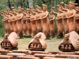 Gambar sampul Ada Apa di Taman Penari di Banyuwangi?