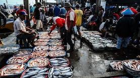 Pertumbuhan Ekspor Ikan Indonesia Ungguli Tiongkok