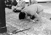 Empat Jasa Bung Karno untuk Umat Islam Seluruh Dunia yang Patut Dikenang