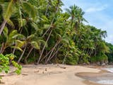 Gambar sampul Turut Menjaga Kelestarian Daerah Konservasi, Masyarakat Fakfak Dilatih Perikanan Berkelanjutan