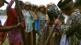 Festival Kampung Penyengat Olak: Upaya Menjaga Tradisi Menumbuk Padi