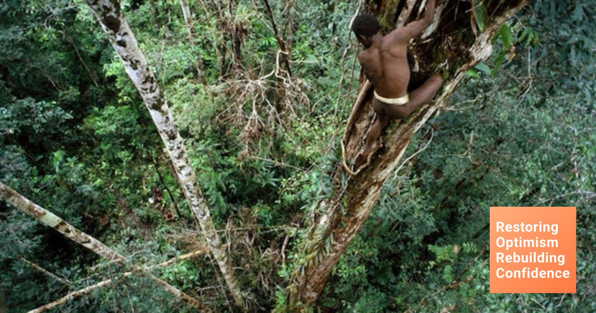 Foto Foto Luar Biasa Rumah Pohon Suku Korowai Di Papua