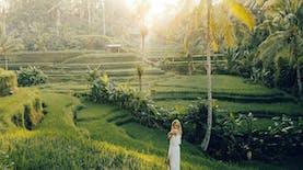 Selamat! Indonesia Menjadi Salah Satu Negara Penghasil Beras Terbesar di Dunia. Berapa Produksinya?