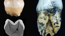 Penemuan Ini Buktikan Leluhur Homo Sapiens Telah ada di Sumatra 63.000 Tahun yang lalu