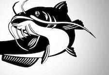 Mitos Larangan Mengonsumsi Ikan Lele di Lamongan