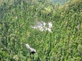 Gambar sampul Kini Taman Nasional Ini Punya Suaka Paruh Bengkok