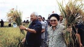 Sejarah Hari Ini (7 Mei 1994) - Panen Raya di Merauke