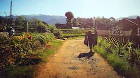 Melihat Sudut Pandang Desa di Indonesia Lewat Kongres Kebudayaan Desa