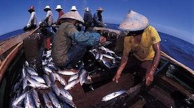 Kerjasama Indonesia dan Amerika  Perkuat Promosi Sektor Perikanan