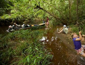 """Menjelajah """"Amazon"""" nya Indonesia"""