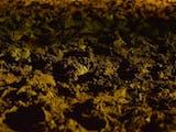 Gambar sampul Hanyaterra : Suara Tanah Jatiwangi