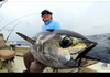 Wow, Ikan Ini Sama dengan Seharga Alphard !