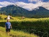Gambar sampul Desa Menagih Sumpah Pemuda