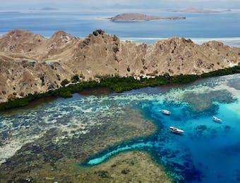 2 Scuba Divers dari Amerika Jajal Menyelam di Labuan Bajo
