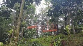 Menyelam Sambil Minum Air di Pusat Edukasi Hutan Hasil Kerjasama Indonesia-Korea Selatan di Sentul