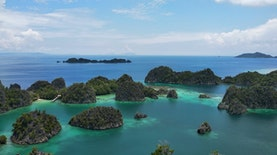 Menengok Pulau Kofiau, Bagian dari Raja Ampat dan Habitat Burung Endemik Indonesia