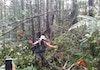 Cerita dari Hutan: Batang Toru yang Syahdu