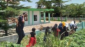 Mengenal Young Cassavapreneurs Program
