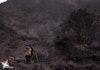 Peringati Hari Gunung Sedunia, Mapala UMN Terapkan Konsep Less Waste Pada Pendakian Perdananya