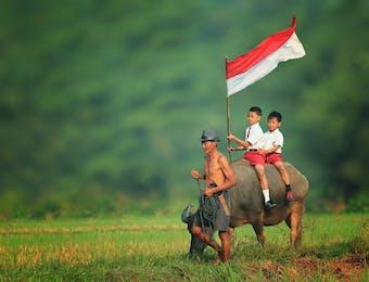 5 Prediksi Tren E-Commerce Indonesia di tahun 2017