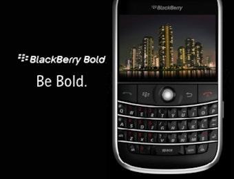 Indonesian Blackberry