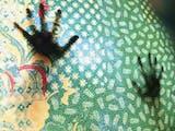 Mengenal Lebih Dekat Pesona Keelokan Batik Madura