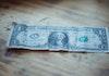 Rupanya Kertas Uang Dolar Berasal dari Pohon di Sulawesi Utara Ini!