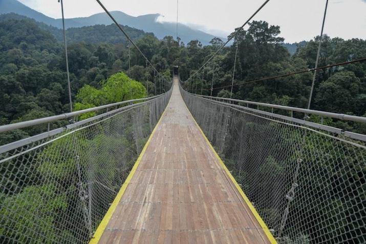 Jembatan Gantung Terpanjang di Asia Tenggara Sudah Buka! Berani Coba?