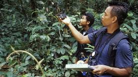 Kalimantan Timur Jadi Model Pembangunan Hijau Dunia