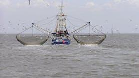 Berkat Teknologi Ini, Kementerian Kelautan dan Perikanan Bakal Bisa Awasi Kapal di Laut Indonesia