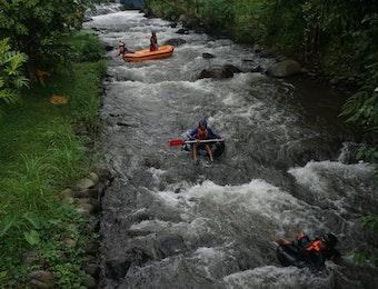 Kisah Pemburu Pakis yang kini Menjadi Pembibit pakis di Kaki Gunung Raung