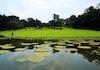 Pertama Kalinya, Indonesia Bakal Punya Museum Sejarah Alam dan Kehidupan