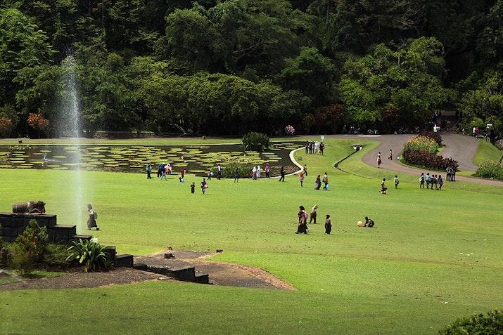 Nyaris Berusia Dua Abad, Kebun Raya Bogor Bakal Inisiasi Dua Kebun Raya Baru