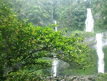 Keindahan Air Terjun Tingkat Sembilan di Bengkulu