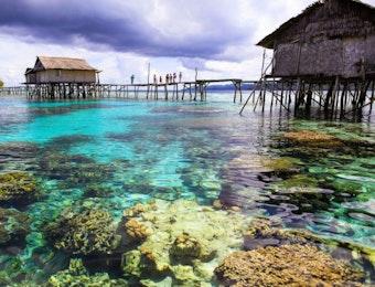 Ketahui Fakta Cagar Biosfer Indonesia yang Diakui UNESCO