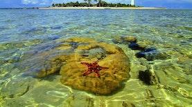 Ketika Beras yang Basah Menjadi Pulau