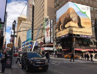 Wonderful Indonesia Mejeng Lagi di Times Square, New York!