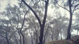 3 Gunung di Indonesia yang Selain Eksotis Namun Juga Mistis!