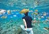 Destinasi Ini Cocok Untuk Kalian yang Ingin Menyelam Bersama Ikan Tapi Takut Kedalaman Laut