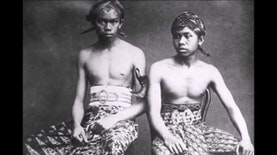 Tanah Jawa di Selatan Amerika