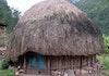 Mengenal Rumah Honai Suku Dani di Papua