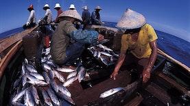 Indonesia Bakal Menjadi Negara Maritim Terbesar Kedua di Asia