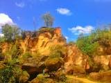 Gambar sampul Salah Satu Arizonanya Indonesia Ada di Madura
