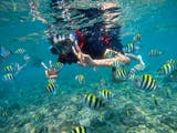Gambar sampul Eksotis Nan Menawan, Inilah Alasan Pantai Nglambor Wajib Dikunjungi