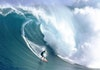 10 Pantai Indonesia yang Terkenal Ombaknya, Cocok untukmu Pecinta Surfing